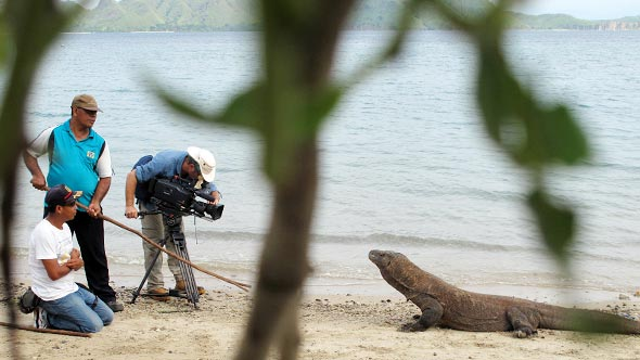 Filming in Komodo with Jungle Run Productions